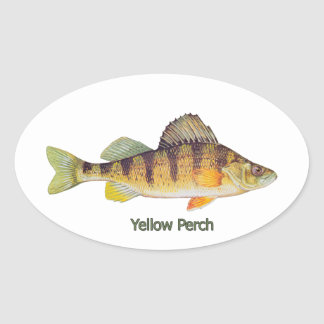 Yellow Perch titled Oval Sticker