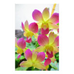 Yellow Pink Orchids Stationery Paper