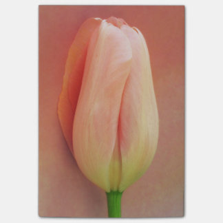 Yellow Pink Tulip Flower Floral Tulips Flowers Post-it Notes