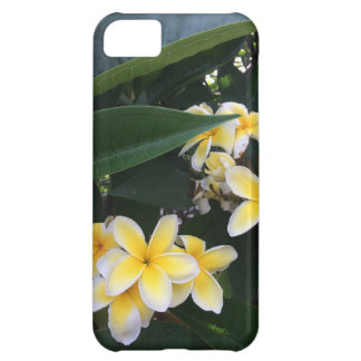 Yellow Plumeria Blossoms iPhone 5C Case