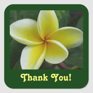 Yellow Plumeria Thank You Stickers