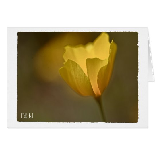 Yellow Poppy Flower/Floral  Art Card