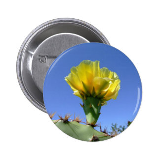 Yellow prickly pear cactus flower pins