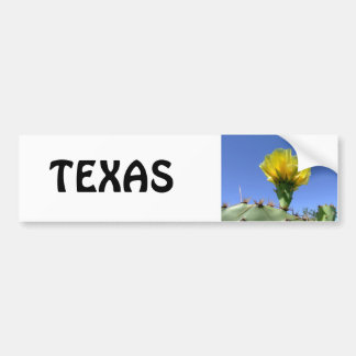 Yellow prickly pear cactus flower bumper sticker