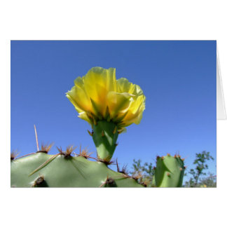 Yellow prickly pear cactus flower greeting card