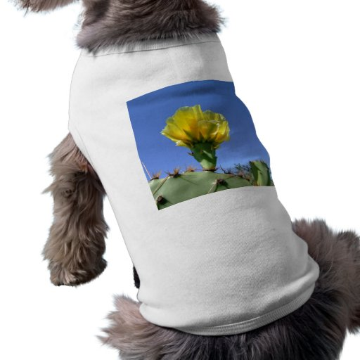 Yellow prickly pear cactus flower pet clothing