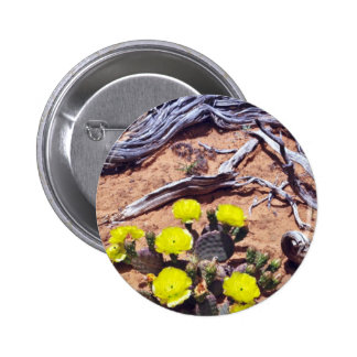 Yellow-Prickly Pear Cactus flowers Button