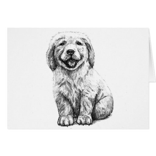 Yellow Puppy Lab Greeting Card