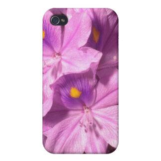 Yellow Purple haze flowers iPhone 4 Covers