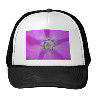 Yellow-purple plant star with bloom stamps trucker hats