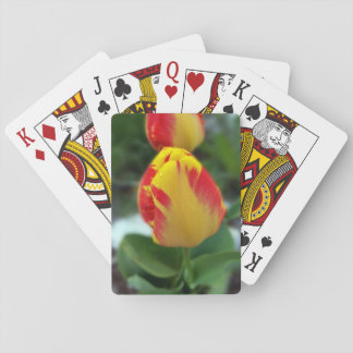 yellow red tulips playing cards
