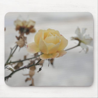 Yellow Rose and Snow Mouse Pad