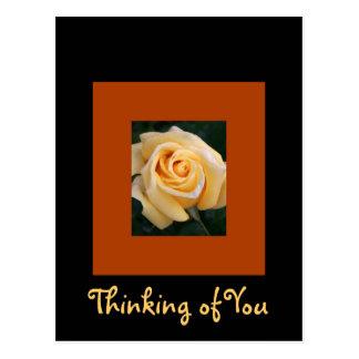 Yellow Rose Beauty Postcard