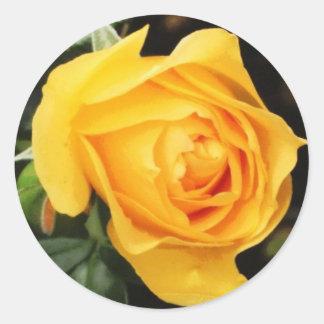 'Yellow Rose' Envelope Seal Round Stickers