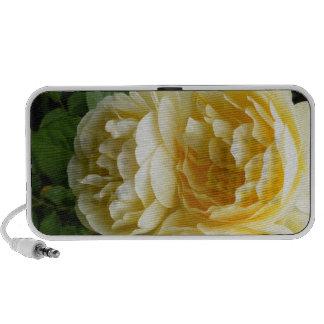 Yellow Rose ipad iphone Speakers