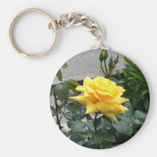 Yellow Rose of Texas Key Ring
