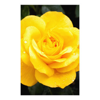 Yellow Rose Personalized Stationery