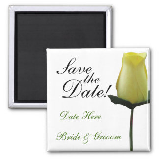 Yellow Rose Save the Date Square Magnet