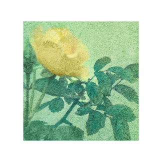 Yellow Rose Vintage Style Photo Stretched Canvas Print