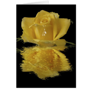 Yellow rose water reflection blank note card