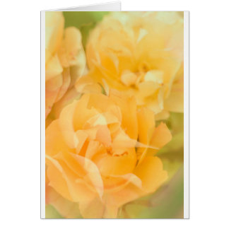 Yellow roses card