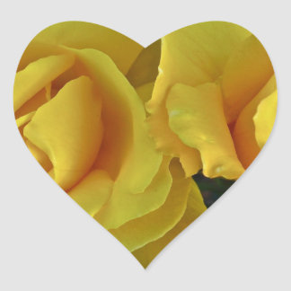 Yellow Roses Floating In Space Heart Sticker