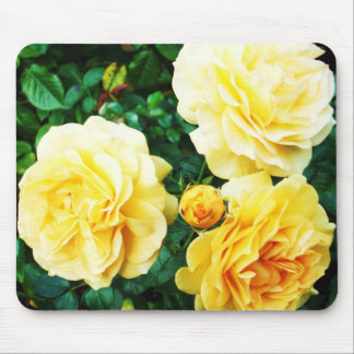 Yellow Roses mouse-pad Mouse Pad
