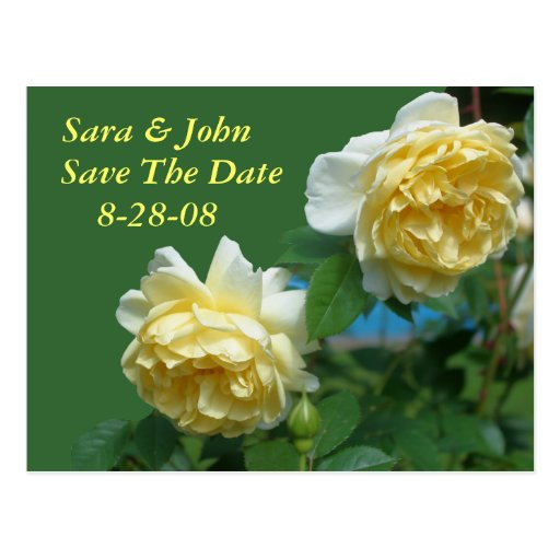 Yellow Roses Save The Date Wedding Postcard