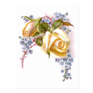 Yellow Roses Victorian Trade Card Post Cards