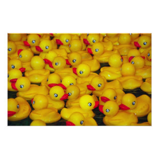 Yellow rubber duckies print poster