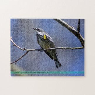 Yellow Rumped Warbler Bird Puzzle