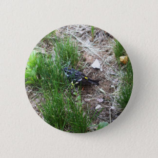 Yellow-Rumped Warbler-Myrtle Warbler 6 Cm Round Badge