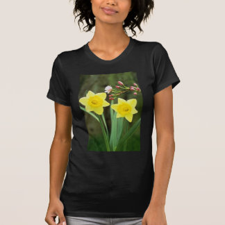 yellow Small-cupped Narcissi, 'Baby Doll' flowers Shirts