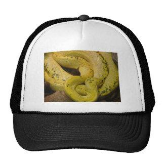 yellow snake trucker hat