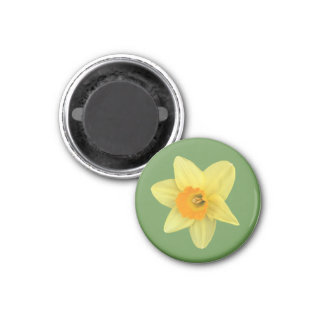 Yellow Spring Daffodil 3 Cm Round Magnet