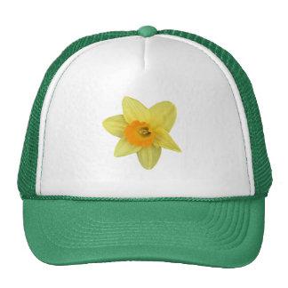 Yellow Spring Daffodil Cap
