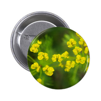 Yellow Spring Flowers Pinback Buttons