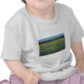 yellow Spring in the Beauce flowers Tshirts