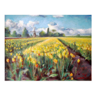 Yellow Spring Tulips Flower Fields Painting Postcard