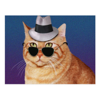 Yellow Striped Cat with Sunglasses and Hat Postcard