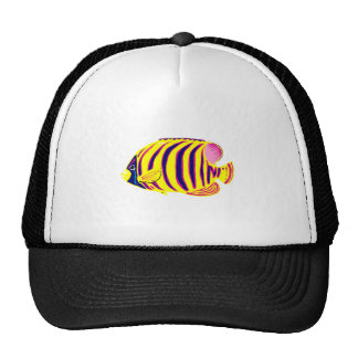 Yellow Striped Tropical Fish Hats