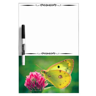 Yellow Sulpher Butterfly Decorative DryEraseBoard Dry-Erase Whiteboards