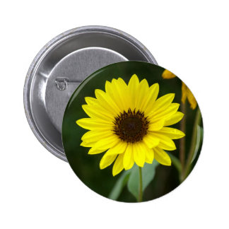 Yellow Sunflower Button
