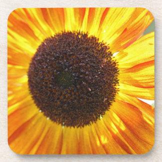 Yellow Sunflower Coasters
