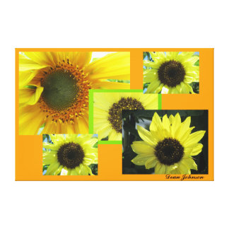 Yellow Sunflower Colash Stretched Canvas Prints