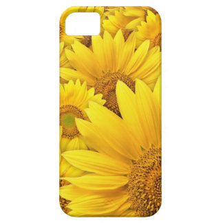 Yellow Sunflower Iphone 5S Case iPhone 5 Cover