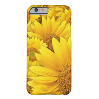 Yellow Sunflower iPhone 6 case Barely There iPhone 6 Case