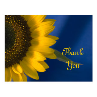 Yellow Sunflower on Blue Thank You Postcard