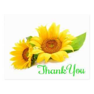 Yellow Sunflower Thank You Green Wedding Flowers Postcard