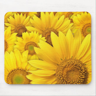 Yellow Sunflowers Mouse Pad